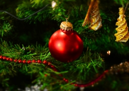 surviving christmas stress blog - image of christmas tree
